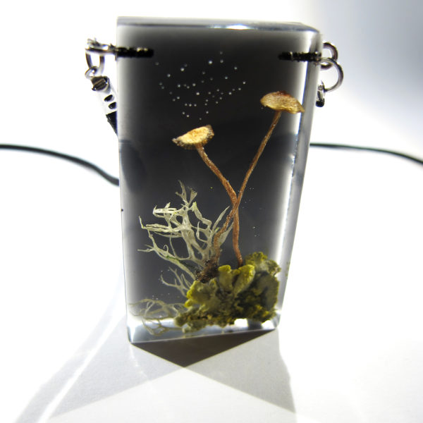 Harilik rihmsablik ja seened